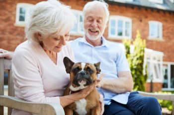 Pet therapy in senior living communities