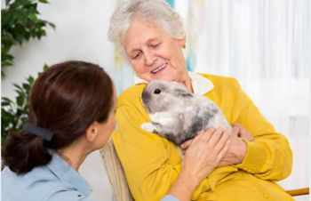 Questions to Ask a Pet-Friendly Assisted Living Community